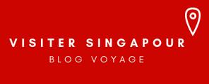 Visiter Singapour: Blog voyage pour préparer son voyage à Singapour